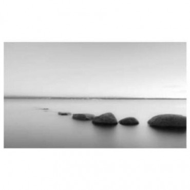 Black and White Rocks Canvas