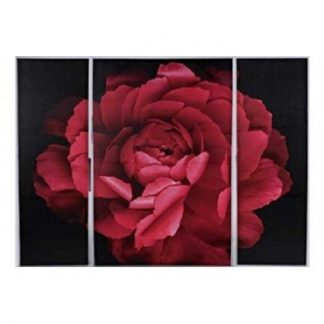 Large 3 piece Canvas Wall art Red Ranunculus Triptych size W120 H90 D 2.5