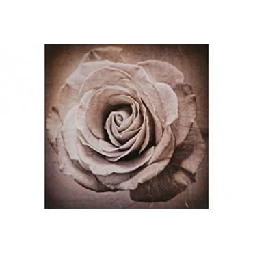 Fleur Luxe Sepia Flower Canvas.